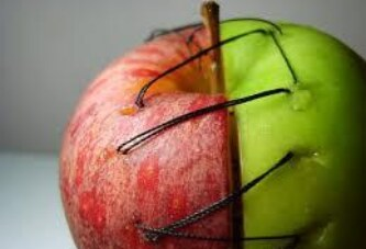iki yarım bir elma