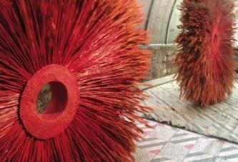 Suzy Hug Levy ile 'Rüzgârda Bir Yaprak' misali…