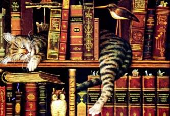 Biraz da kitap gibidir dostluklar