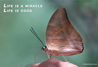 Mucizeler el ele dolaşır